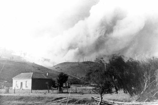 P3878 Bushfire at back of Wye River 1939 xx