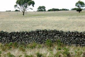 drystonewall