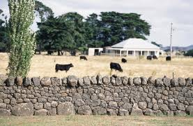 drystonewallfarm