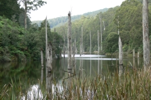 Lake_elizabeth