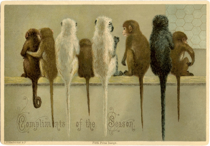 Vintage-Christmas-Monkeys-Image-GraphicsFairy