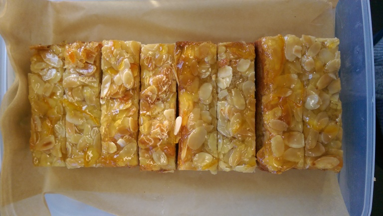 almond-marmalade-coconut-slice