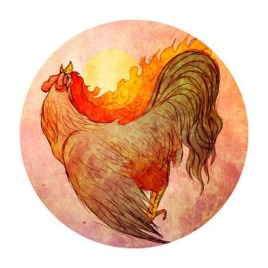 fire_rooster_by_zhenvision-d6iv7gr