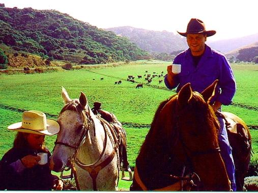 horses-coffee-johanna-flat
