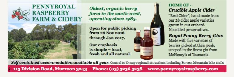 pennyroyal-raspberryfarm