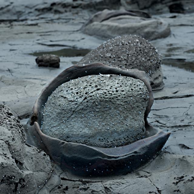 Clam Stone.jpg
