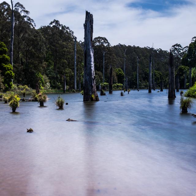 Lake Elizabeth Pano No.1.jpg