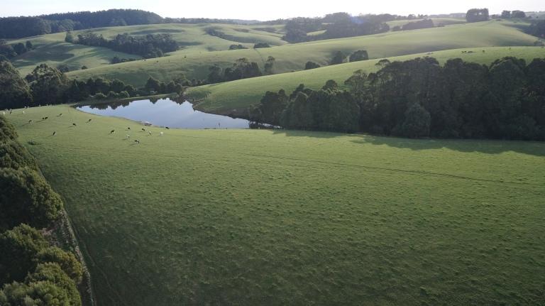 A&N Dam