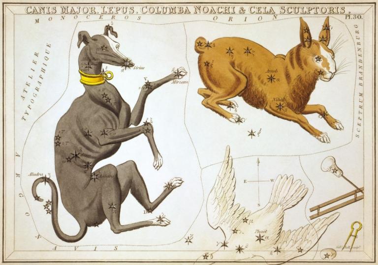 Sidney_Hall_-_Urania's_Mirror_-_Canis_Major,_Lepus,_Columba_Noachi_&_Cela_Sculptoris.jpg