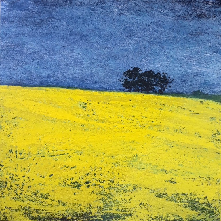 Canola yellow 60x60cm Gayle Seach